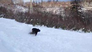 november snowboarding in sapporo