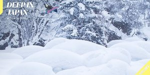 Victor De Le Rue Rides Deep, Fluffy Powder in Japa...